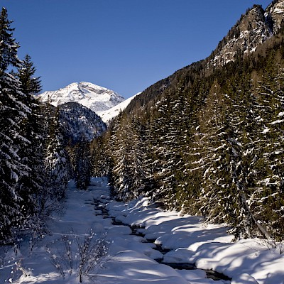Winter_Defereggental_Osttirol_St.Jakob_Bach Schwarzach in Patsch